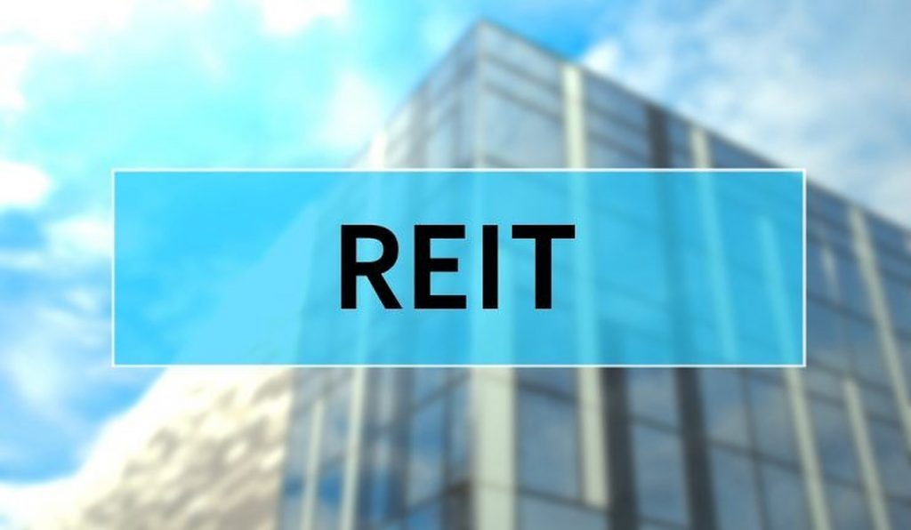 why do reits have high dividend payout ratios