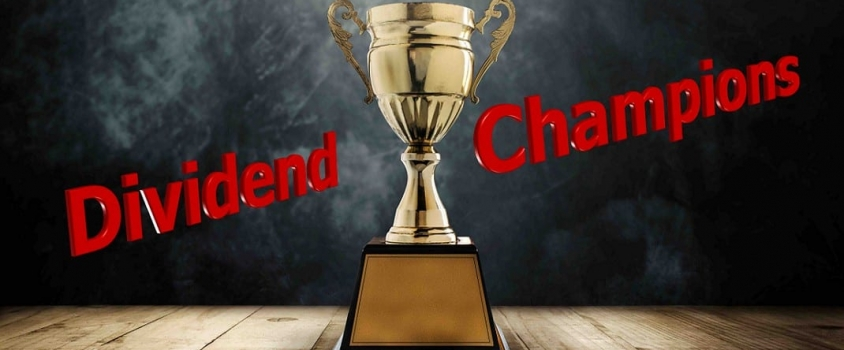 What are the Dividend Champions?