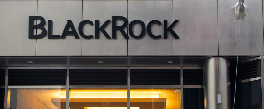 The BlackRock Diversified Dividend Fund: Our Analysis and Rating (MDDVX)