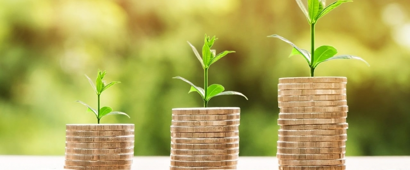 Dividend Reinvestment Plans (DRIPs) – The Complete Guide