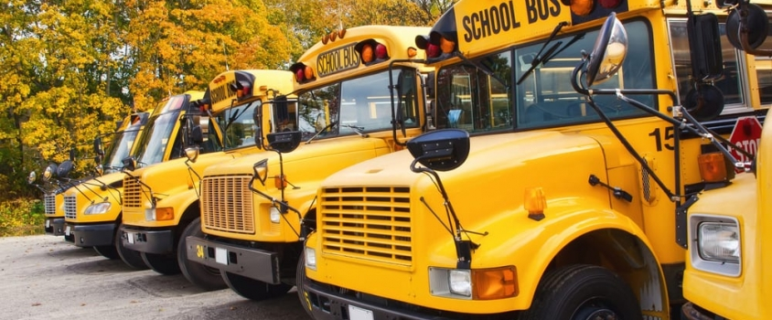 Six Back-to-School Dividend Stocks to Purchase Show Signs of Benefitting from the Latest Shopping Trends