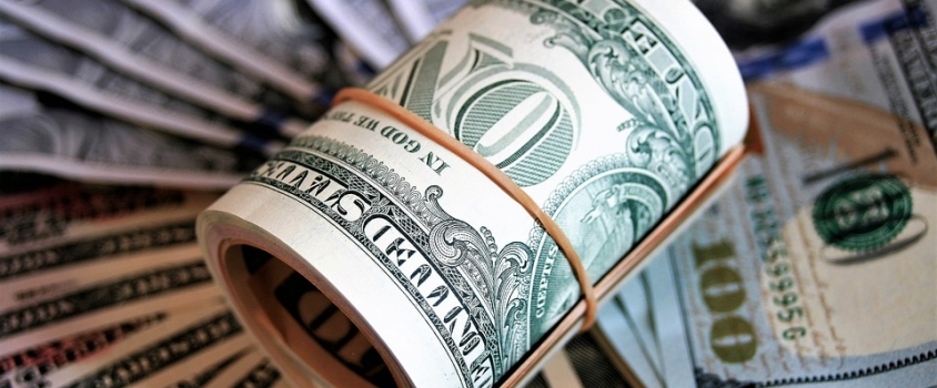Surviving Interest Rate Volatility